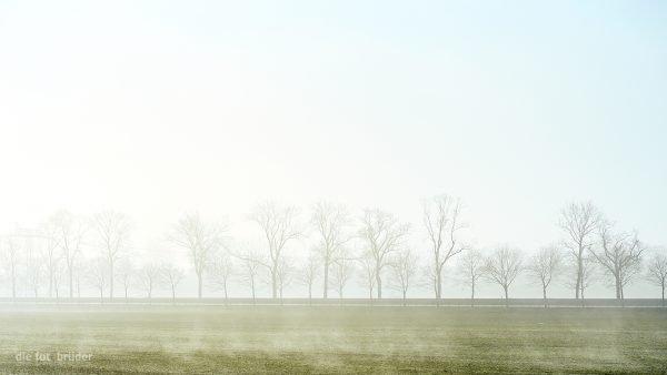 Neuenhagen im Nebel