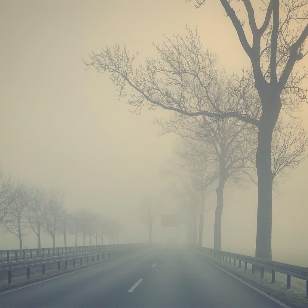 Nebelwand (Bild mit dem Handy gemacht und mit dem Handy bearbeitet)